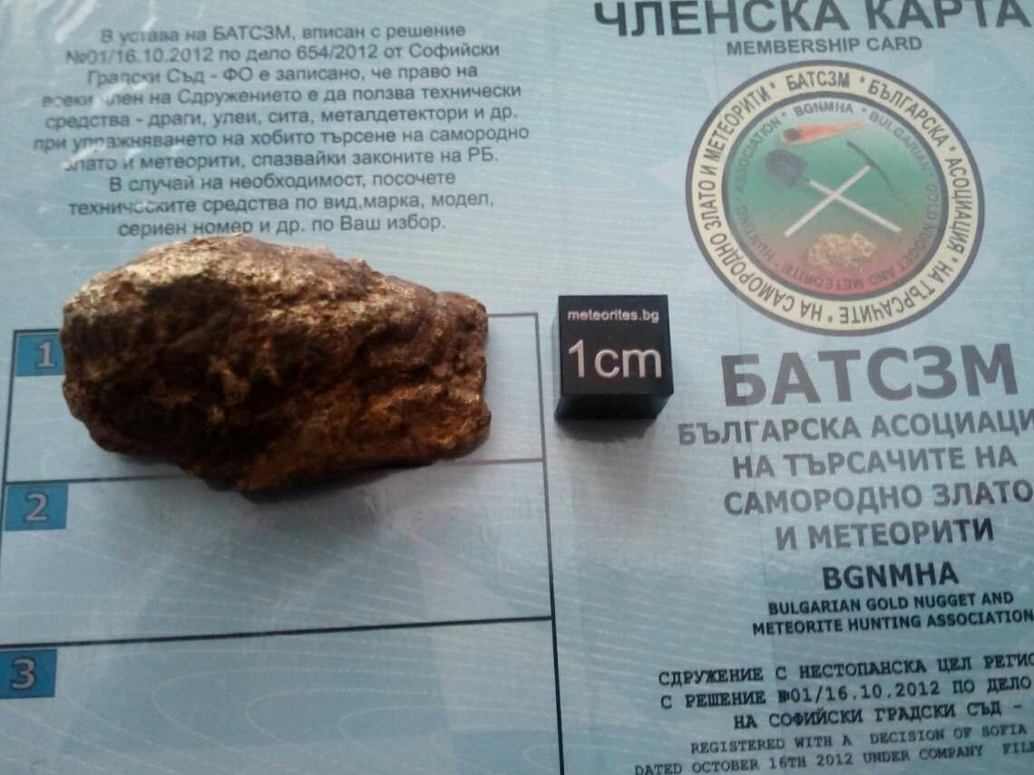 Самородно злато и кварц от Северозападна България намерено 2016г от член на БАТСЗМ